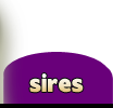 Sires